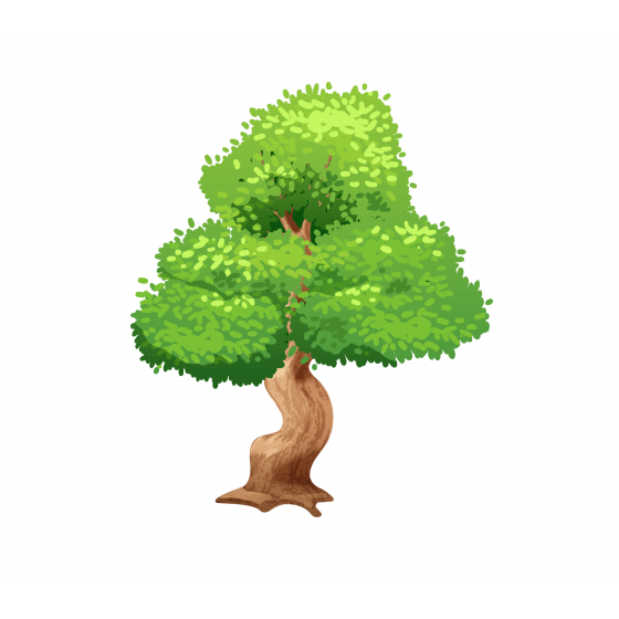 Для декоративних дерев (хвойних)